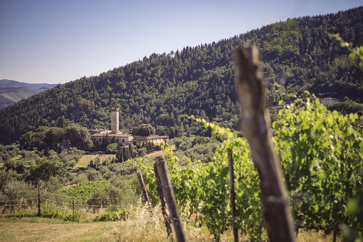 Chianti Rufina di Grignano: un vino che sa di storia.