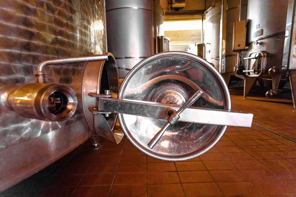 Dai Girasoli di Sant'Andrea, due IGT che profumano di Umbria